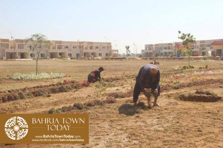 Bahria Town Karachi Latest Progress Update - February 2016 (49)