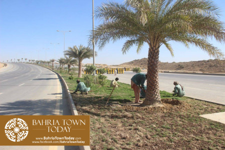Bahria Town Karachi Latest Progress Update - February 2016 (51)