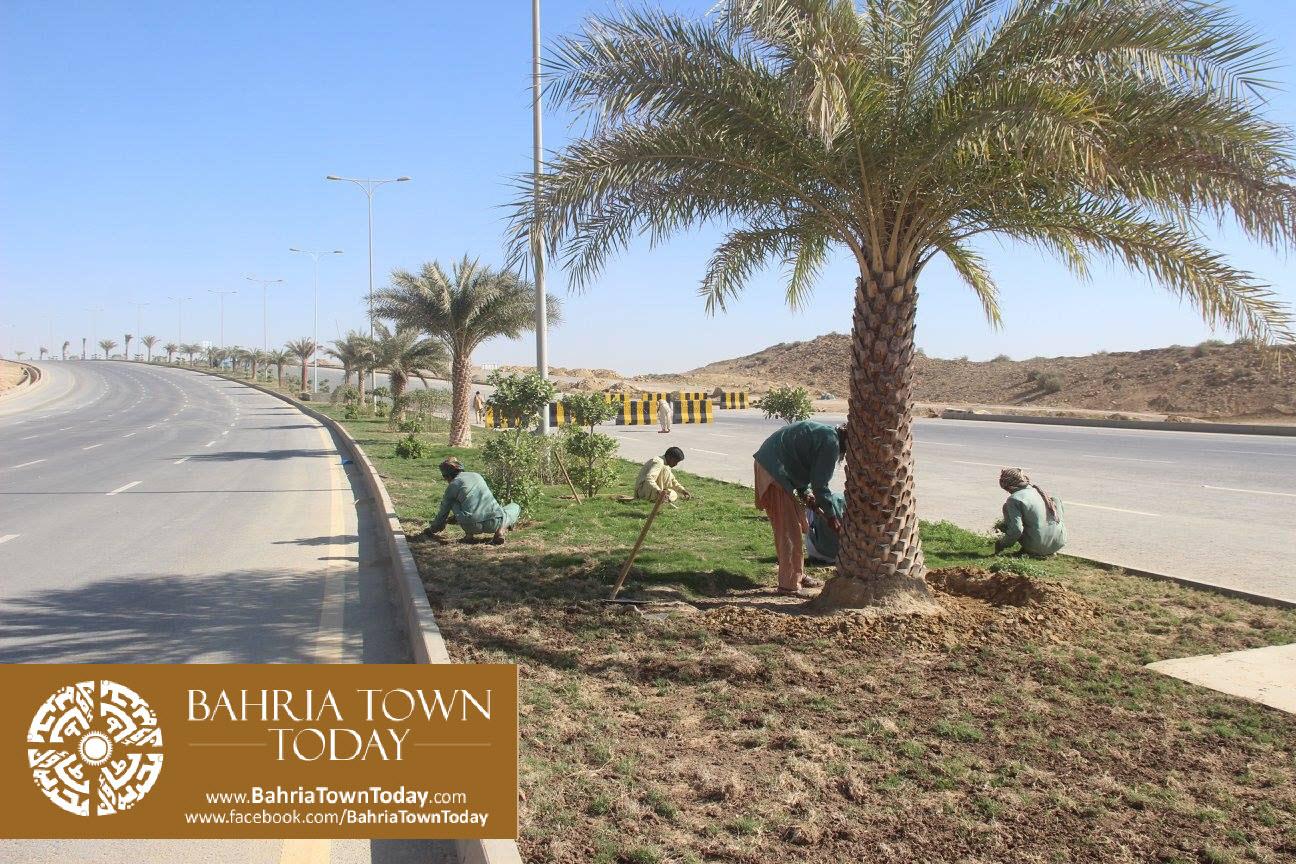 Bahria Town Karachi Latest Progress Update – February 2016 (51)