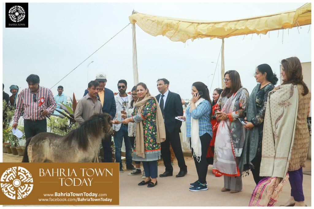 Bahria Town Hosted Pet Show 2017 at Bahria Town Karachi (10)