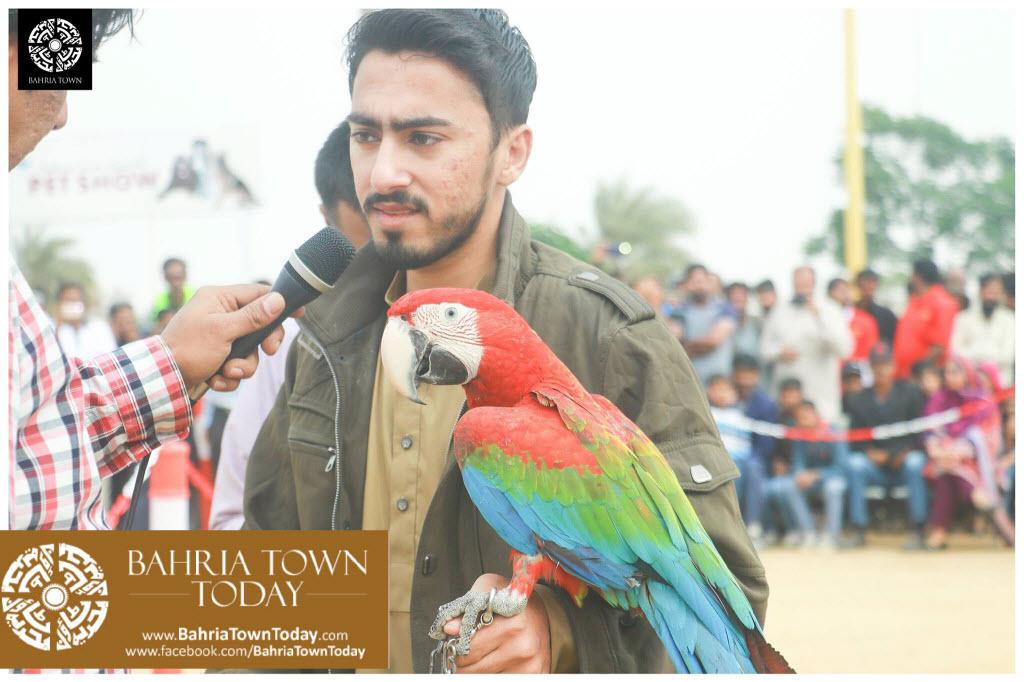 Bahria Town Hosted Pet Show 2017 at Bahria Town Karachi (4)