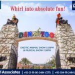 Whirl into Absolute Fun | Bahria Town Karachi